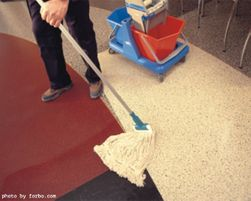 Forbo Marmoleum Floors: Common Complaints & Cleaning Tips