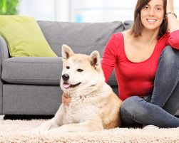 How to Remove Pet Fur from Carpet
