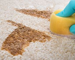 How to Spot Clean Carpet