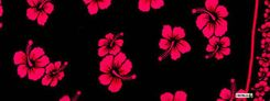 Mens Hibiscus Half/Mini Sarong in Black/Pink