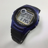 Men's Casio Digital Sports 5 Alarms Watch W213-2A