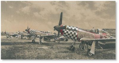 Eagles of the Eighth by Richard Taylor (P-51 Mustang)