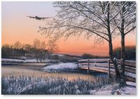 Straggler at Dawn by Richard Taylor (Lancaster)