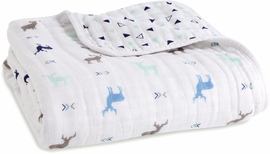 Aden + Anais Classic Dream Blanket - Scout