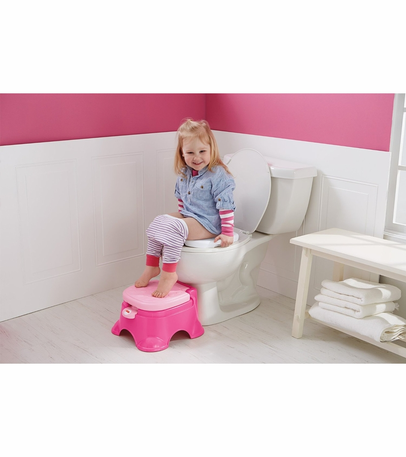 Surprising Fisher Price Pink Princess Stepstool Potty Pabps2019 Chair Design Images Pabps2019Com