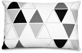 Olli + Lime Decorative Pillow - Triangle