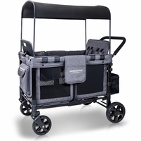 Stroller Wagon Sale
