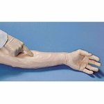 Life/form� Venipuncture and Injection Demonstration Arm