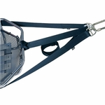 Low-Angle Litter Bridle