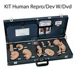 Life/Form Human Reproduction and Development Kit with DVD