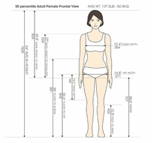 50 percentile Adult Woman Frontal View