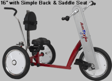 "AmTryke 16"" LARGE Special Needs Tricycle"