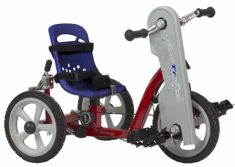 "AmTryke 10"" TODDLER Special Needs Tricycle"