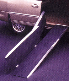 EZ Access Trifold Ramp 10 ft.