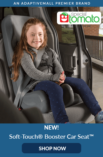 Special Needs Strollers Car Seats Adaptive Equipment
