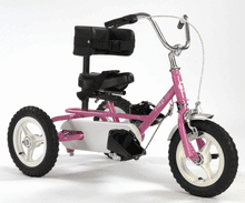 Triad Imp, Special Needs Tricycle