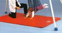 Tumble Forms Safety Mat