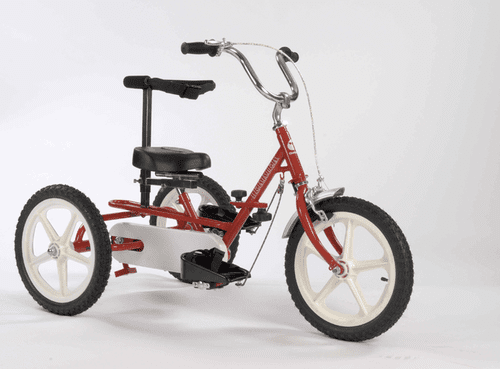 Triaid Terrier, Special Needs Tricycle
