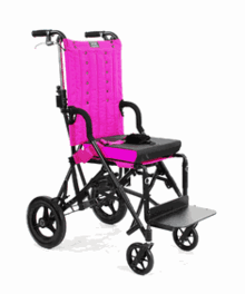 Tilt-in-Space AND Reclining Strollers