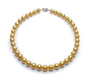 10.1 x 11.9mm Golden South Sea Pearl Necklace