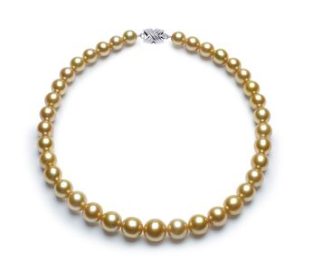 10 x 13.6mm Golden South Sea Pearl Necklace