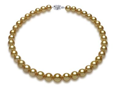 10mm x 12.3mm Golden South Sea Pearl Necklace