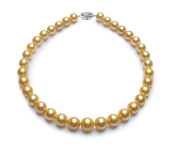 11.1 x 14.8mm Golden South Sea Pearl Necklace