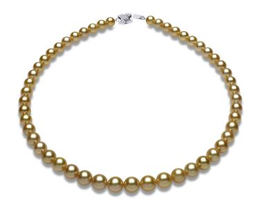 6.9mm x 9.4mm Golden South Sea Pearl Necklace