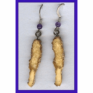 Dual-Tone Paleo Indian  Earrings Fossil Walrus Ivory $24.50