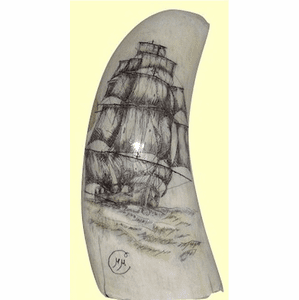 "Gallery ""Clipper With Stunsails"" Scrimshaw Sperm Whales Tooth"