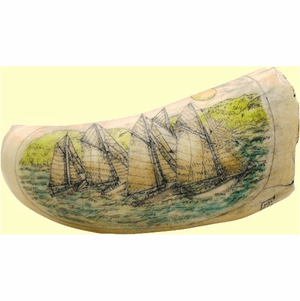 "Gallery Scrimshaw Sperm Whale Tooth ""Friendship Sloop Regatta"""