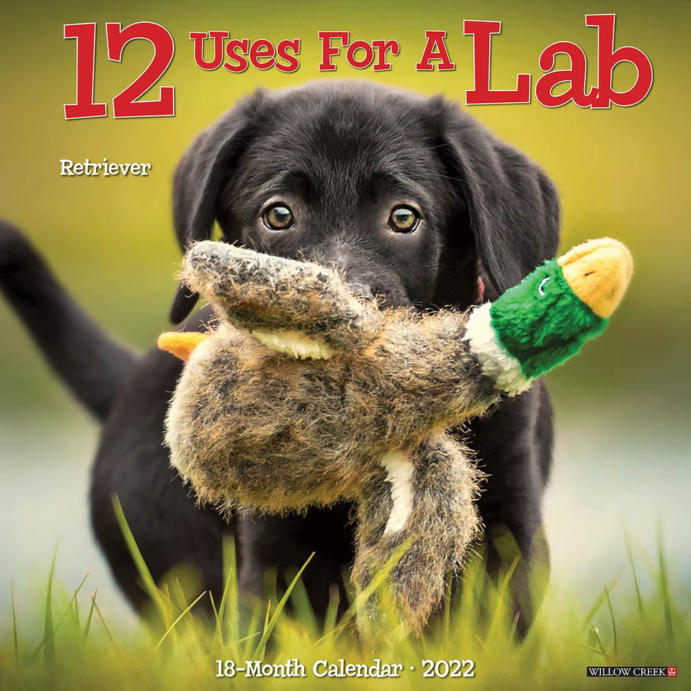 2022 12 Uses for a Lab Calendar Willow Creek