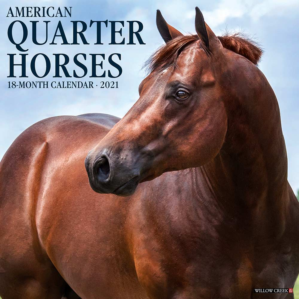 2021 American Quarter Horses Calendar Willow Creek