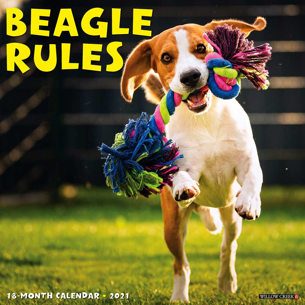 2021 Beagle Rules Calendar Willow Creek