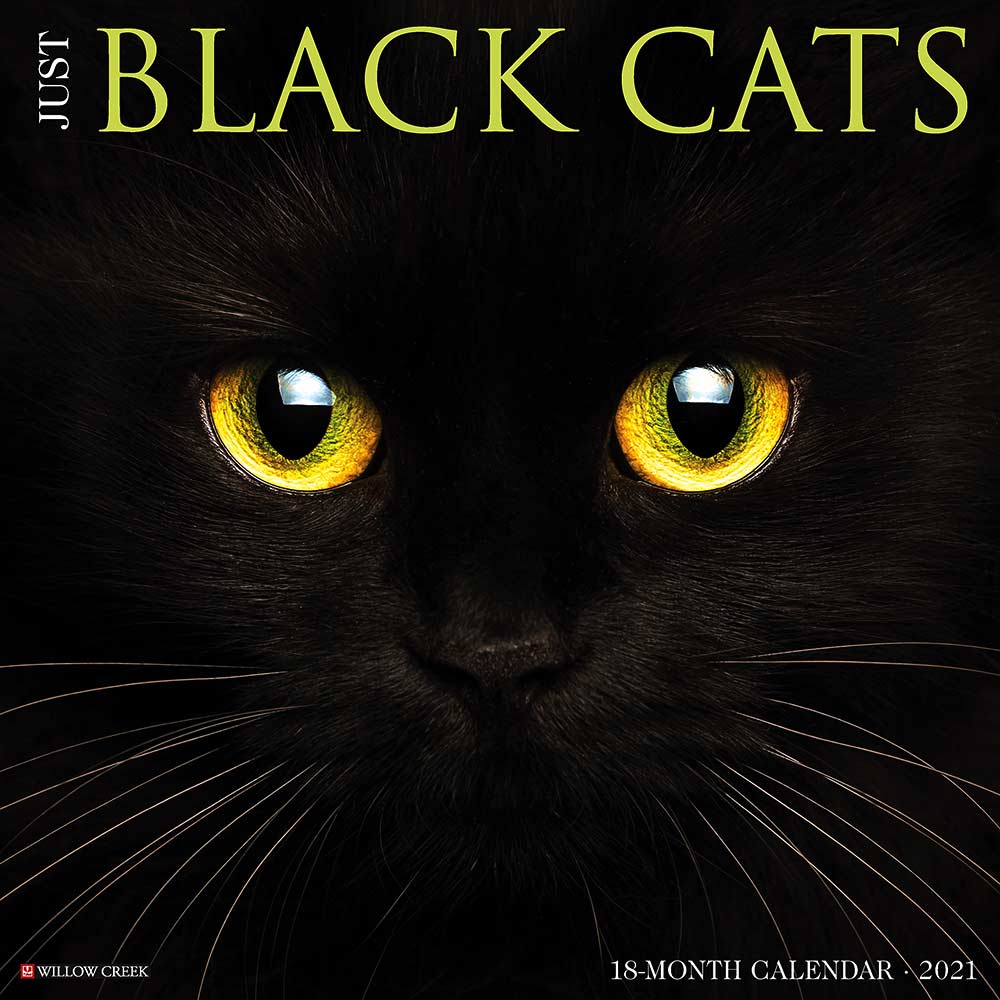 2021 Black Cats Calendar Willow Creek