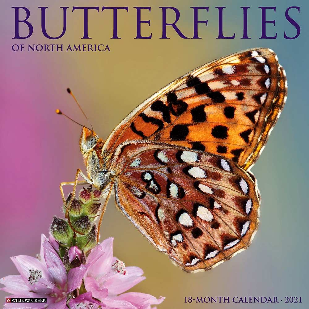 2021 Butterflies Calendar Willow Creek