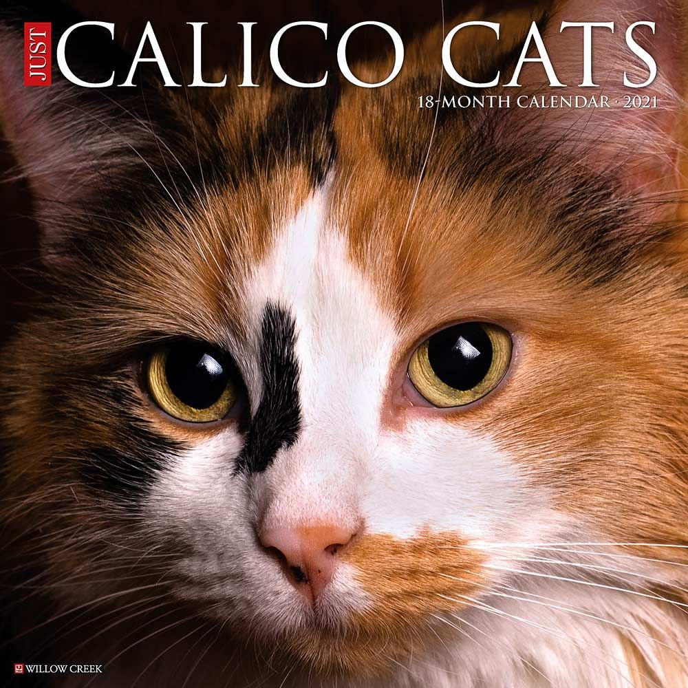 2021 Calico Cats Calendar Willow Creek