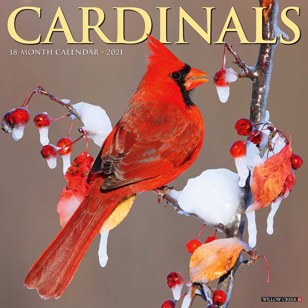 2021 Cardinals Calendar Willow Creek