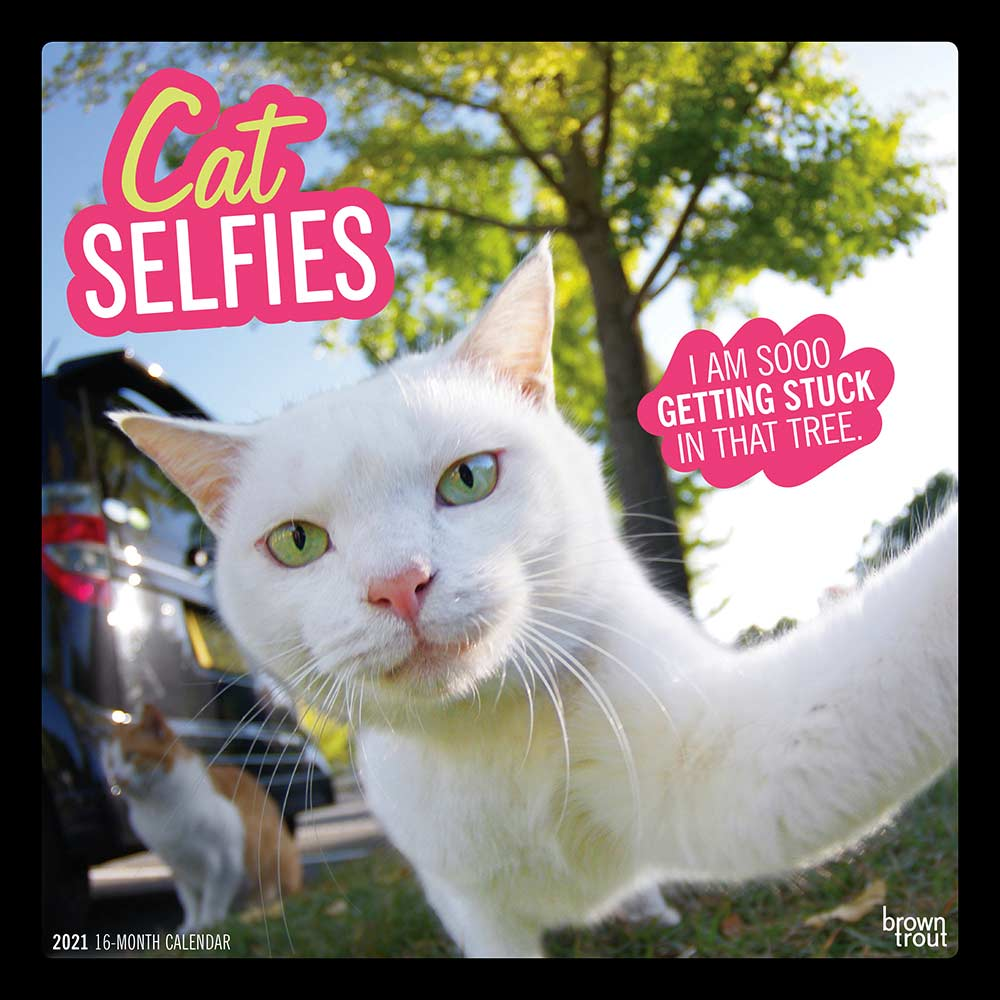 2021 Cat Selfies Calendar