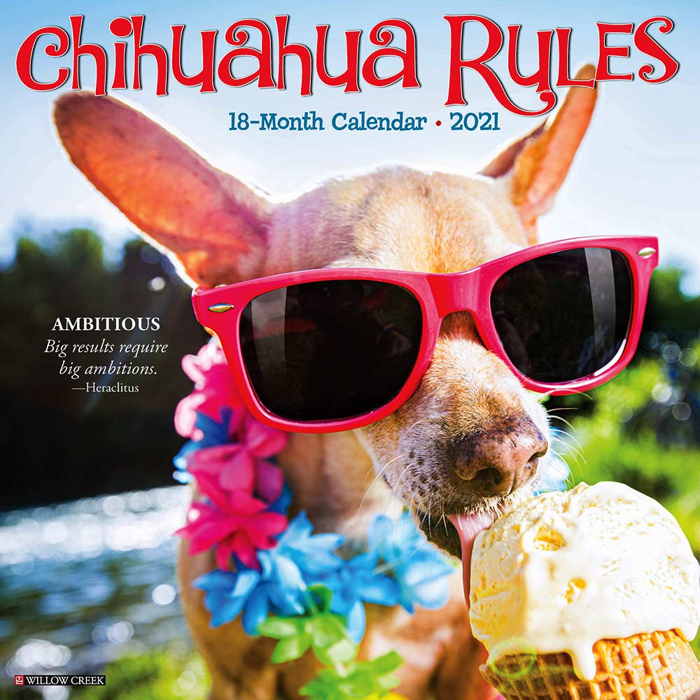 2021 Chihuahua Rules Calendar Willow Creek