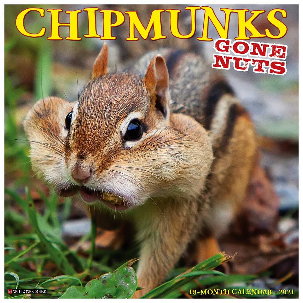 2021 Chipmunks Gone Nuts! Calendar