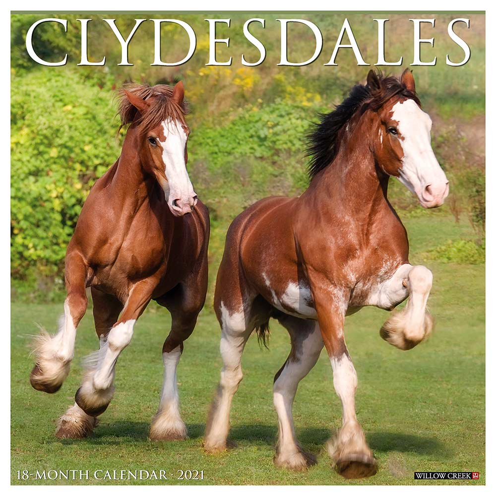 2021 Clydesdales Calendar Willow Creek