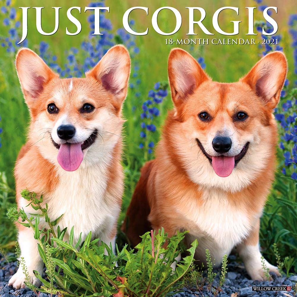 2021 Corgis Calendar Willow Creek