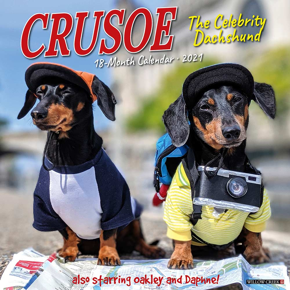 2021 Crusoe the Celebrity Dachshund Calendar