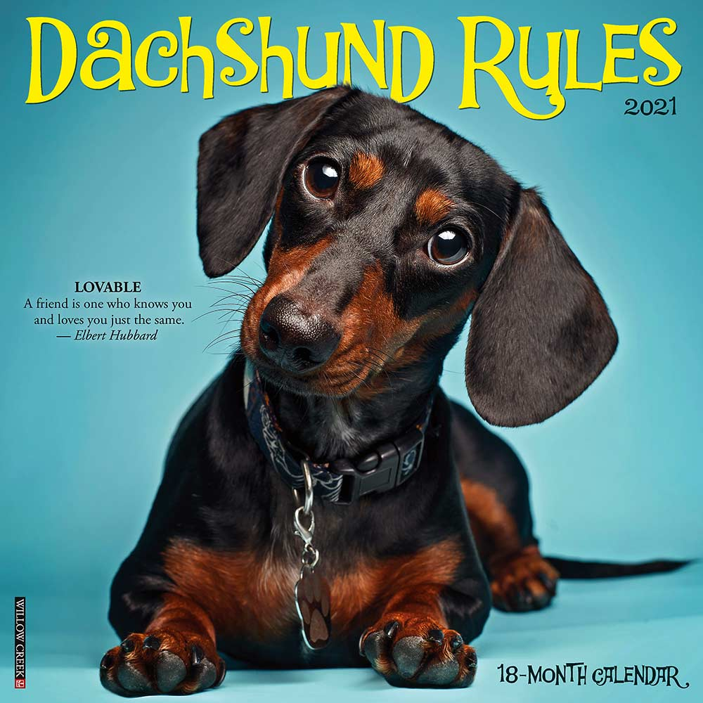 2021 Dachshund Rules Calendar Willow Creek