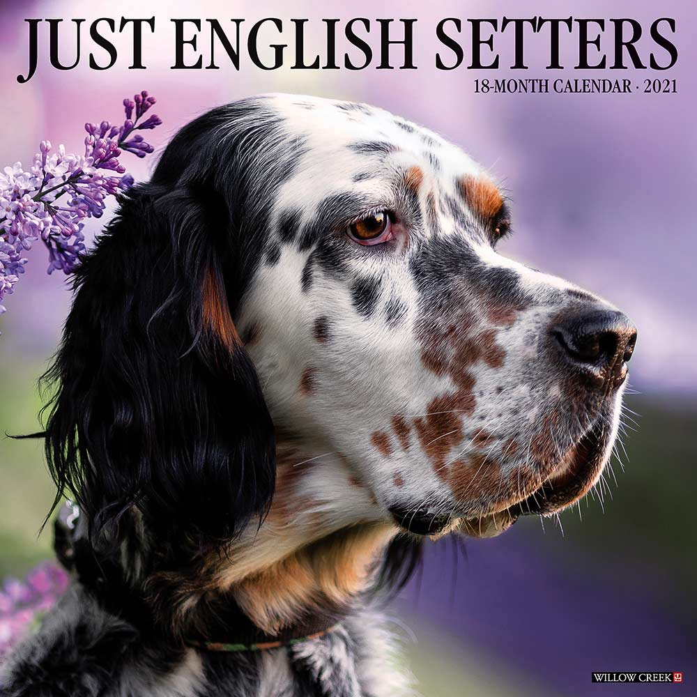 2021 English Setters Calendar Willow Creek