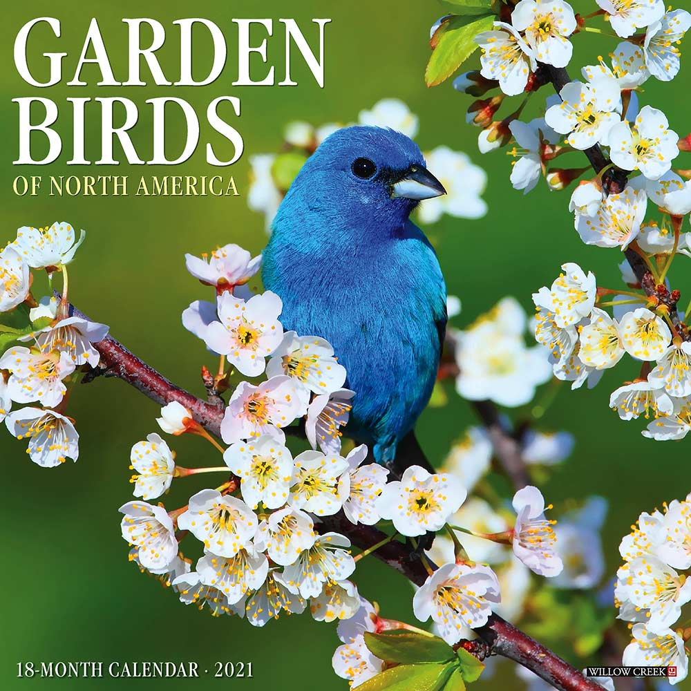 2021 Garden Birds Calendar Willow Creek