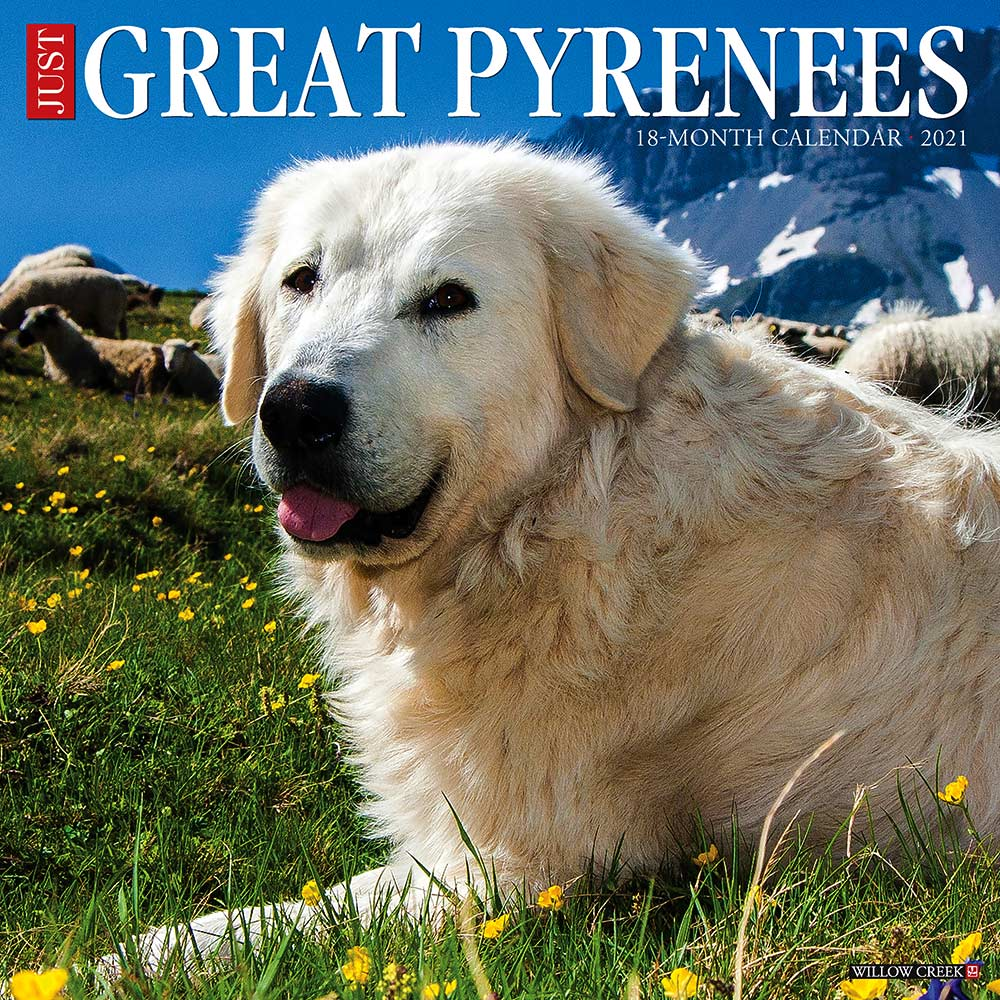 2021 Great Pyrenees Calendar Willow Creek