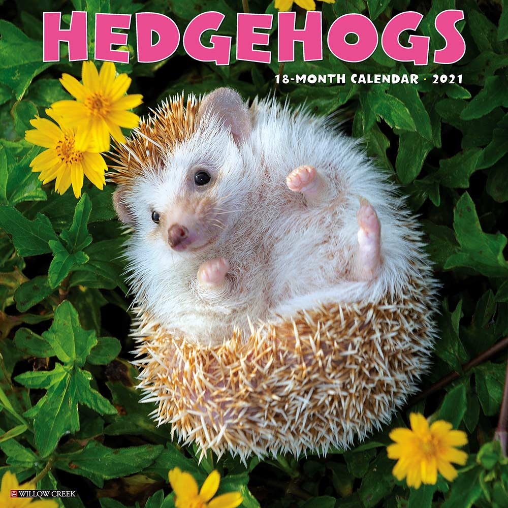2021 Hedgehogs Calendar