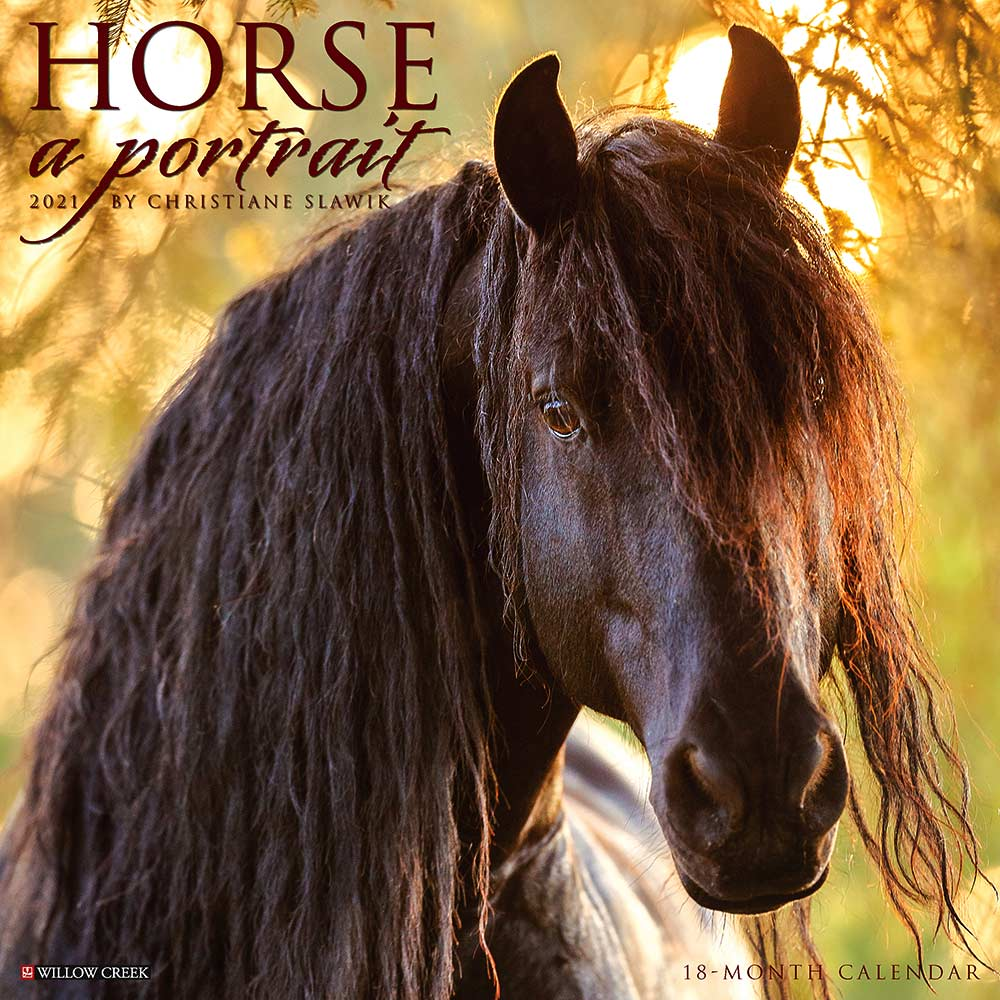 2021 Horse: A Portrait Calendar Willow Creek
